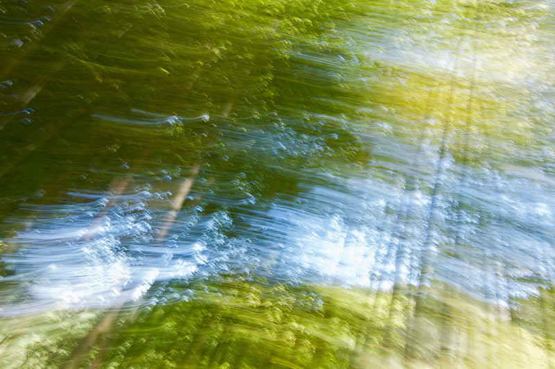 Impression, Bamboo Forest - Octava