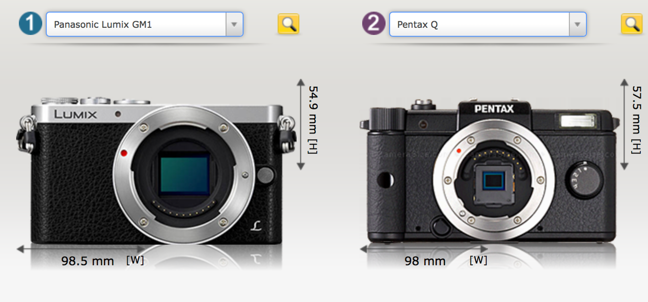 Panasonic GM1 vs. Pentax Q