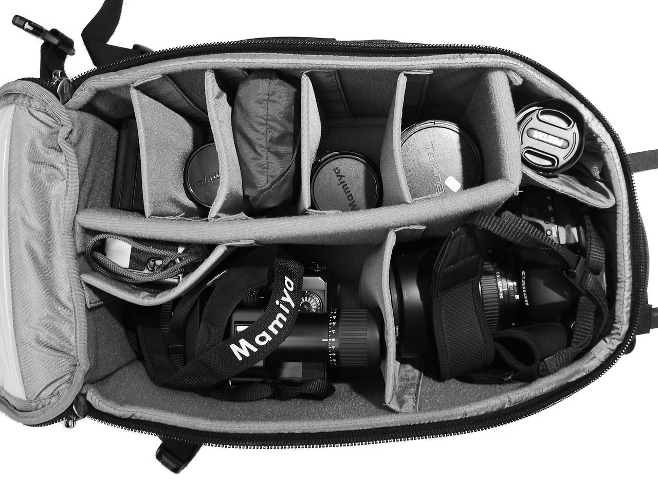 Thinktank Backpack