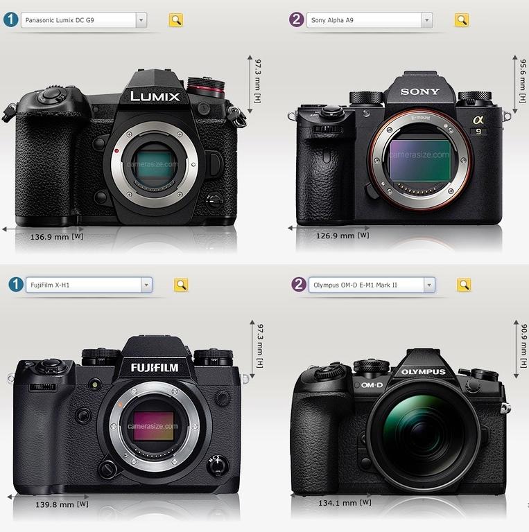 2018 Pro Mirrorless Camera Size Comparison