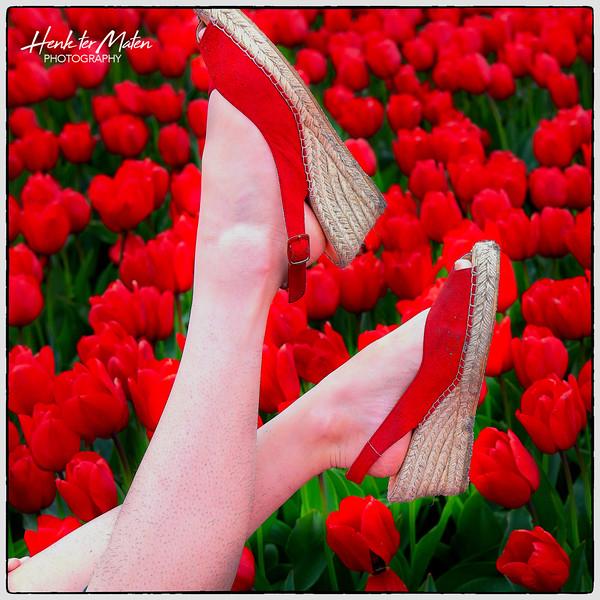 Red shoes and tulips