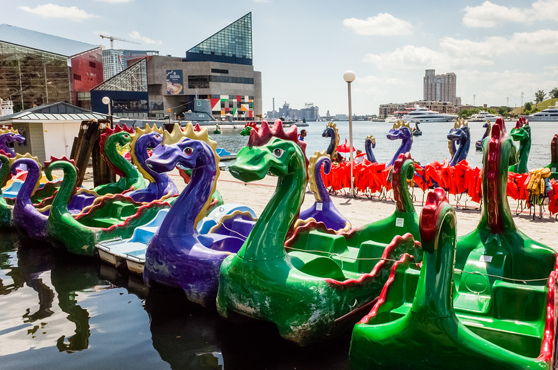 Colorful paddle boats lined up along a dock, Inner Harbor, Baltimore, Maryland.