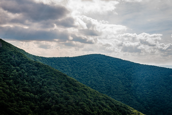 Shenandoah National Forest, Virginia. June 2016.