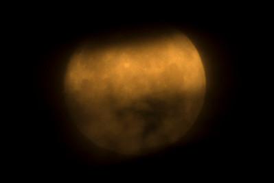 Wolf Moon Hiding