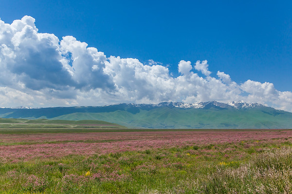 Beautiful Kyrgyz landscape.