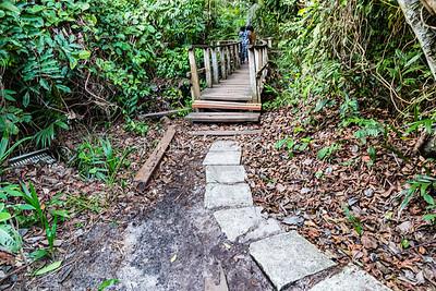 Getting unto the boardwalk Lekki Conservation Center Lekki Lagos Nigeria