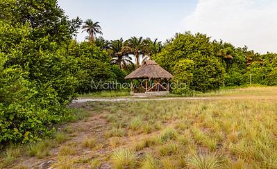 Where the savannah meets the mangrove forest Lekki Conservation Center Lekki Lagos Nigeria West Africa.