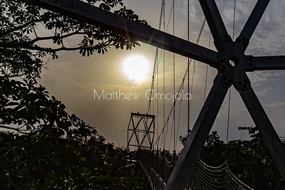 A section of the canopy walkway Lekki Conservation Center, Lekki, Lagos Nigeria  at sunset