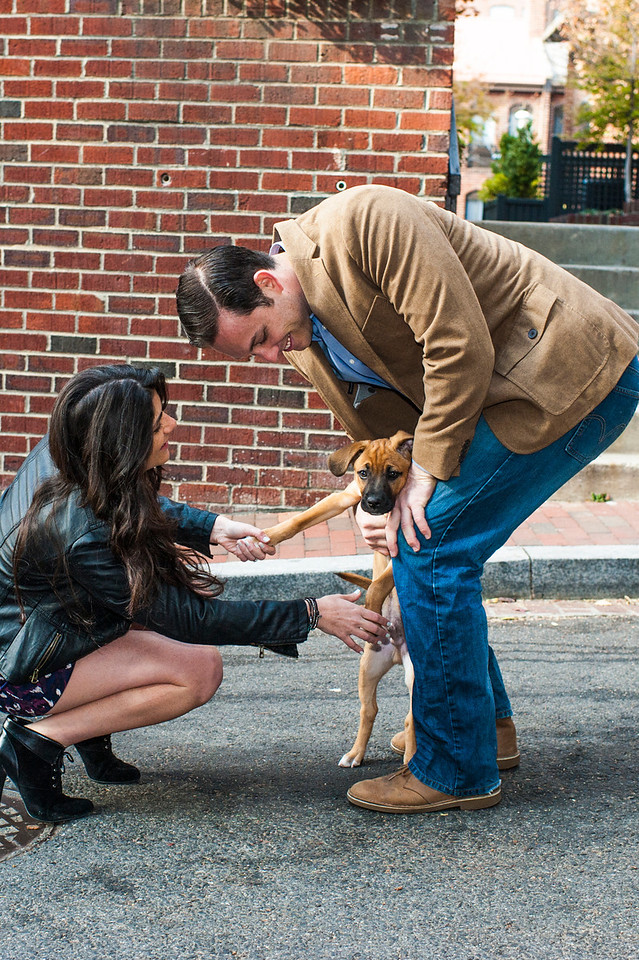 A little dog came by to help bring some more life into the shoot.  Even though Mark and Amanda stopped posing, I couldn't stop shooting!!!