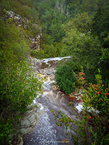 The Keur River. Montagu Pass.Montagu Pass over the Outeniqua Mountains. George. Garden Route. Western Cape. South Africa