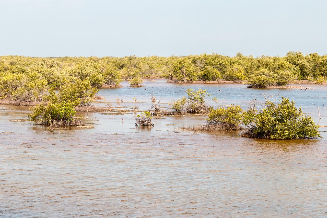Laguna de las Salinas