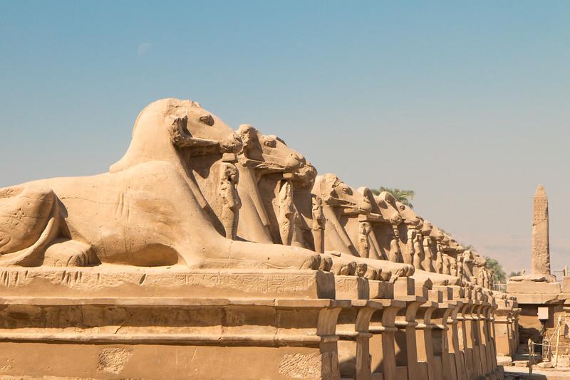 Sphinxes, Karnak, Luxor, Egypt