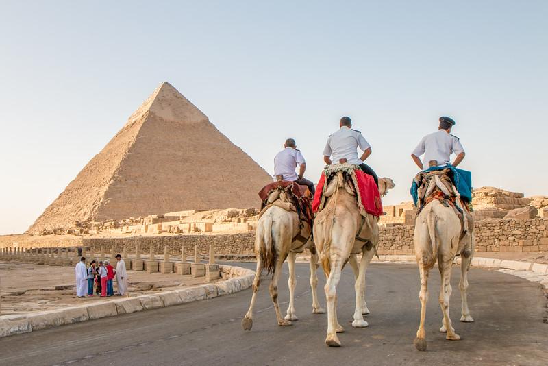 Camel Police