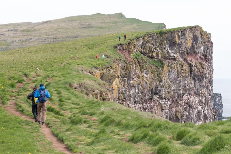 Látrabjarg cliffs