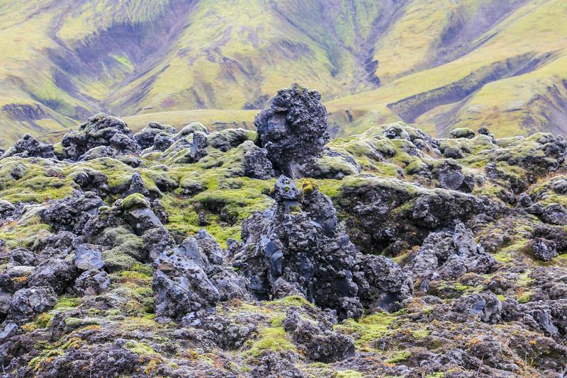 Moss, Highlands, Iceland