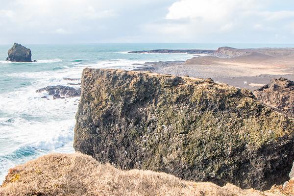 Bird cliff