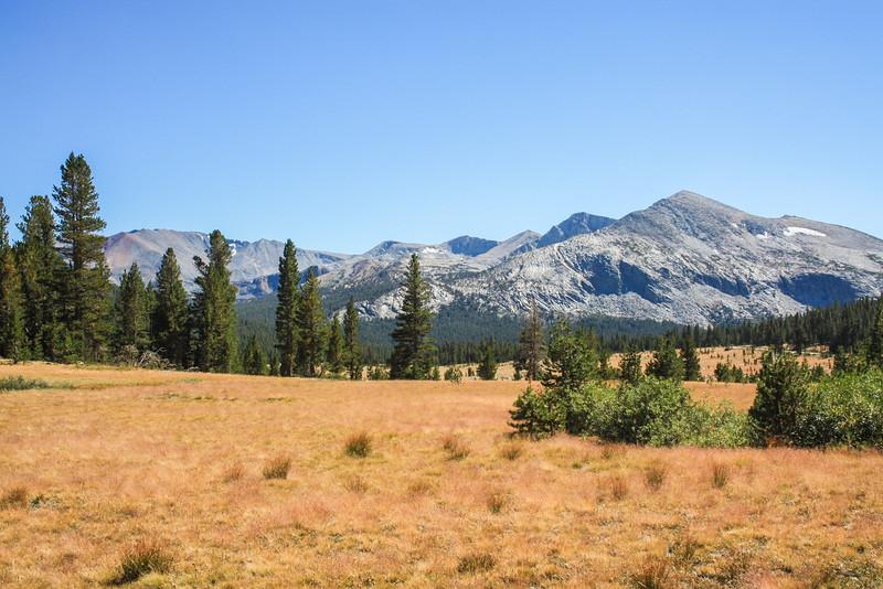 Yosemite Tioga Pass Landscape