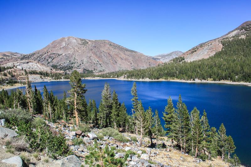 Yosemite Ellery Lake