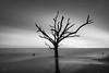 Botany Bay 033, 08/10/2016