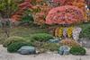 MO Botanical Garden 0017, 11/25/2016