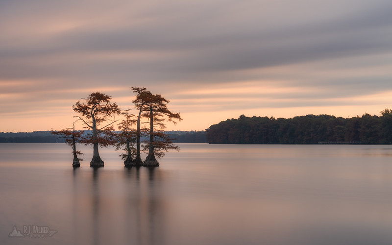 Reelfoot Lake 0196, 10/31/2018