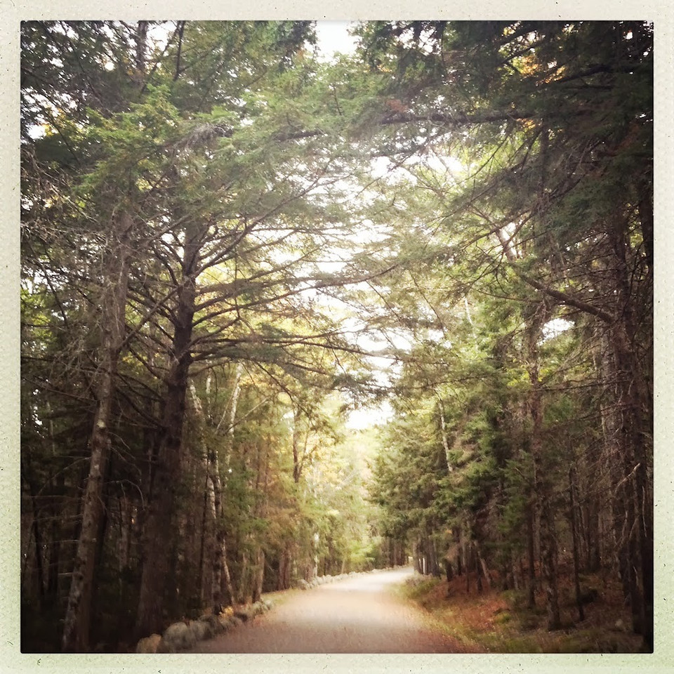 """Closed Trail - Acadia National Park, Maine<br /> __________<br /> <br /> Somewhere along the way I adopted the mantra. I learned that becoming overly agitated, adding emotion on top of already tense situations, doesn't do much good at all. And, it wouldn't allow me to be the person I wanted to be. I wanted to be that calm person in the sea of chaos when """"stuff"""" was happening. Getting overly animated, agitated, whatever you want to call it, was not who I wanted to be. I did not want to portray myself that way. The most important thing I learned in all this was I had a choice. I could decide not to be """"that guy."""" <br /> <br /> I don't think most people realize they have this type of control. For me, saying that mantra when I have those feelings build inside does me wonders. Even if being calm didn't fix the situation as it was, at least I wasn't acting like an idiot while things weren't going right. <br /> <br /> As aviators we are constantly exposed to stressful situations. Most of the time we handle the stress easily. But, sometimes circumstances make us act other than we desire. Some of us are more prone to that than others. Me, I have my share of being that way. What some of you might not know is yes, it's totally controllable - that at any given moment we can be precisely who we want to be, 100% of the time. We have that choice. And those that don't believe it - well, that's a choice in itself.<br /> <br /> Cheers <br /> <br /> Tom"""