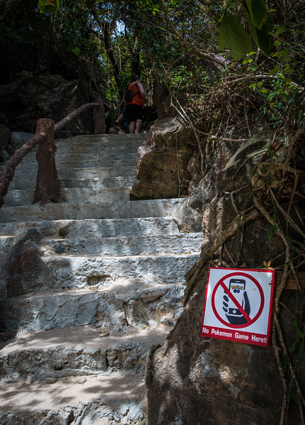 "this island is full of cliffs and drop-offs...""Don't Play Pokemon"" signs are needed to save lives"