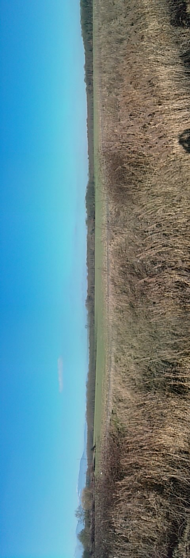second landscape near home