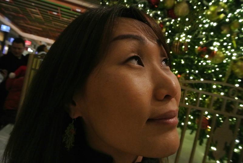 Nikon 1 V1 - Holiday Shots-624