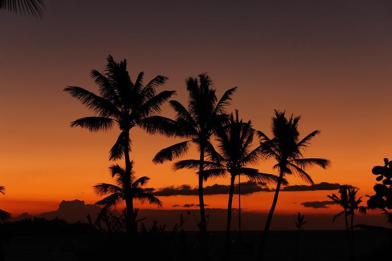 Hawaii Big Island-2092