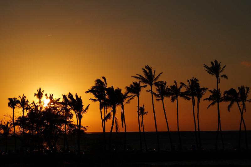 Hawaii Big Island-2083
