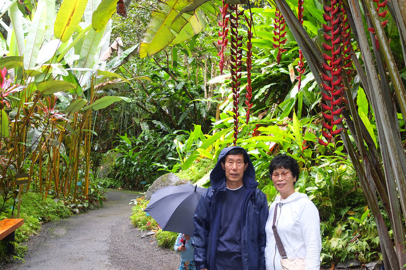 Hawaii Big Island-2037