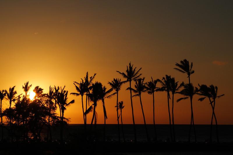 Hawaii Big Island-2084