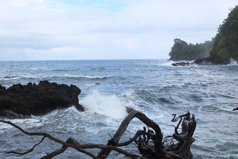 Hawaii Big Island-2057