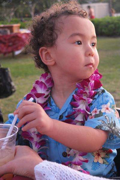 Hawaii Big Island-2087