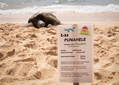 Punahele and Her Marker