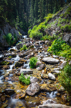 San Juan Mountain Stream
