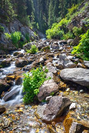 San Juan Mountain Stream
