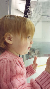 Favorite Mobil Device - Cell Phone... If it weren't for our cells phones we wouldn't have these precious shots. This is Miss Maddie at the Factory watching a hockey game.