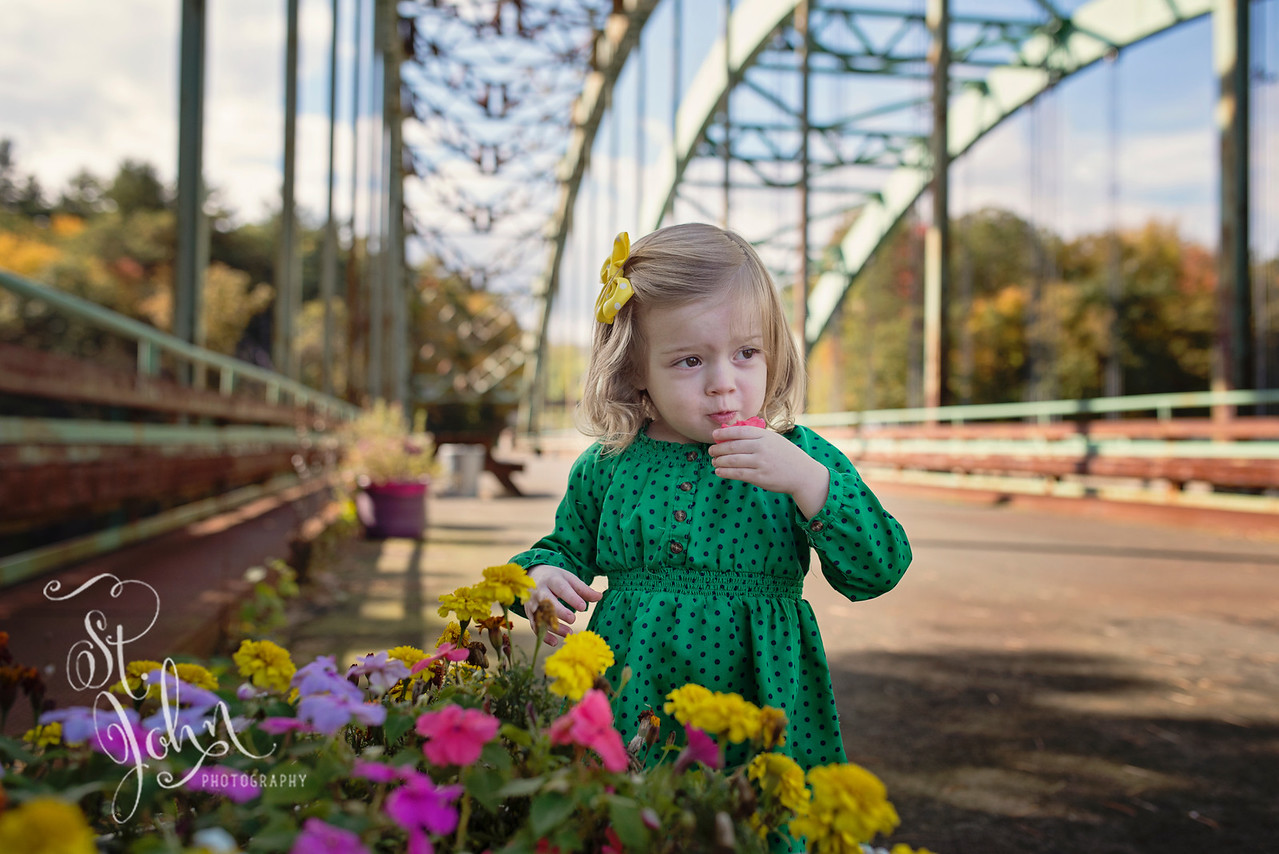 Looking Cute on a NH Bridge