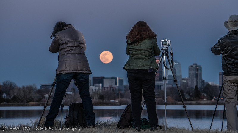 Photographers taking in the Supermoon at Sloan Lake. Photo courtesy of TheWildWildChippo Photography.