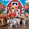 Red barn yard, all props available, birthday shoots include custom letter design