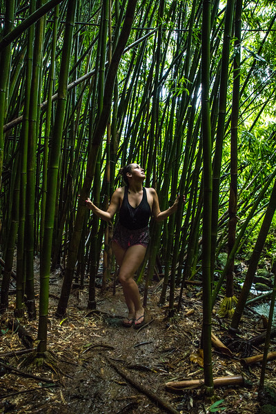 Manoa Jungle Wanders