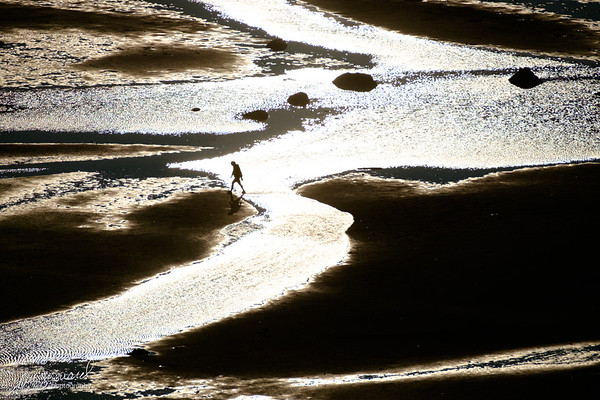 Solitary man on the beach