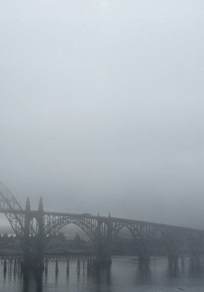 Looking south across the foggy bay.