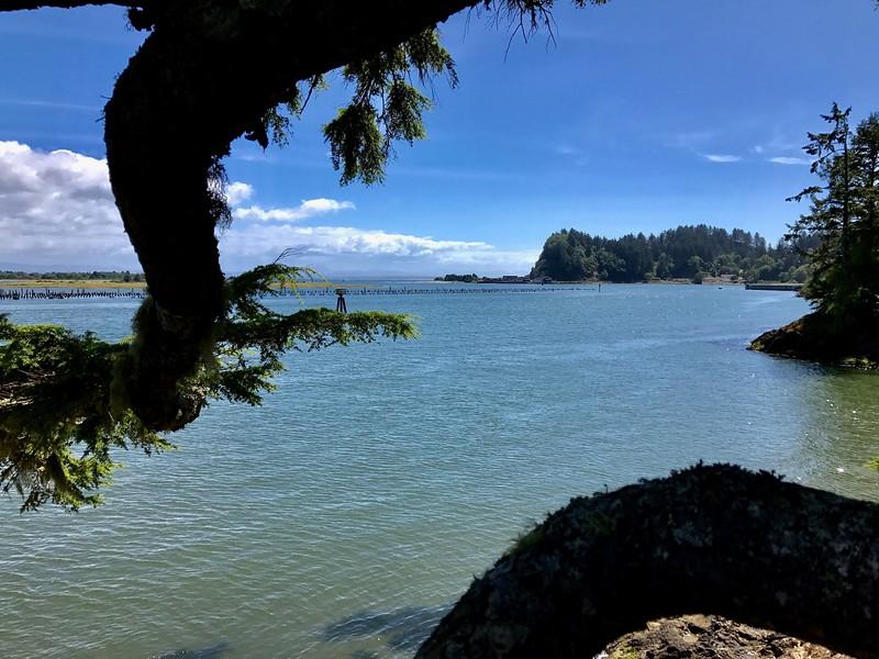 One last look toward Oregon before heading to the Olympic Peninsula.