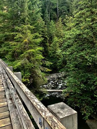 The next morning I ran along the Quinault, a beautiful 1,200-foot climb, to Pony Bridge: https://connect.garmin.com/modern/activity/1938491935.
