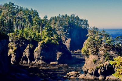 We decided to head home on Saturday but first made a side trip to Cape Flattery, the most northwest point of the lower 48. It was a short, easy hike with good views of the cliffs and Tatoosh Island (although we think there are prettier views farther south), and Mikey was happy to see seals hanging out on a nearby rock.
