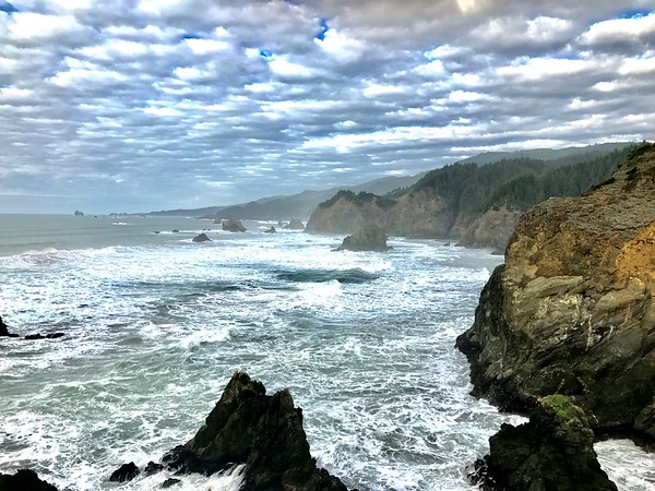 This run along the ocean cliffs was possibly the most beautiful trail run I've ever done.