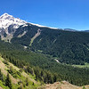 Just shy of a mile in, the woods opened to fantastic views of Mount Hood, which I've read can be skied year-round.